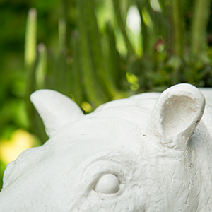Hippo at Plant the Future in Wynwood